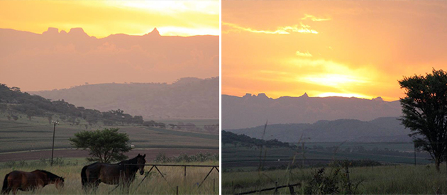 drakensview cottages, self catering cottages, winterton, farm accommodation, drakensberg, kwazulu-natal